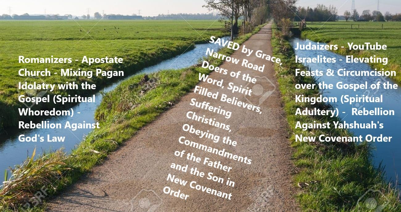 narrow road deep ditches meme